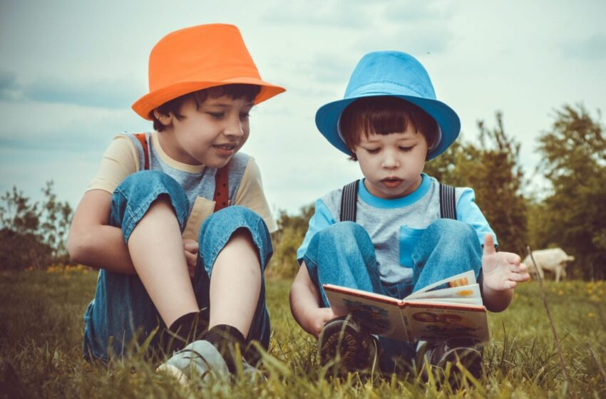 Общественная психолого-педагогическая экспертиза региональных и авторских программ дошкольного образования