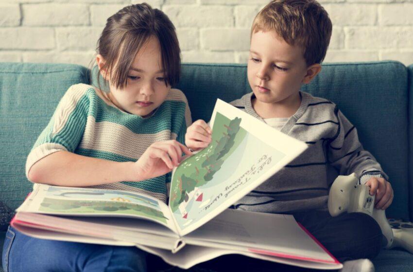 Детская книга — «окно» в окружающий мир: позитивная социализация средствами художественной литературы и книжной графики