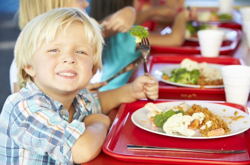 Краснов поручил проверить качество питания в детсадах и школах