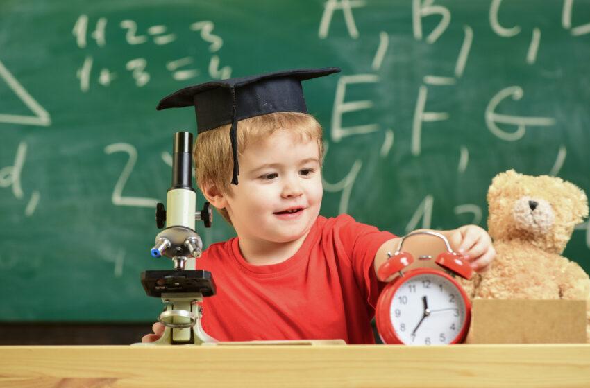 Образовательный проект: STEM-технологии в инклюзивном образовании