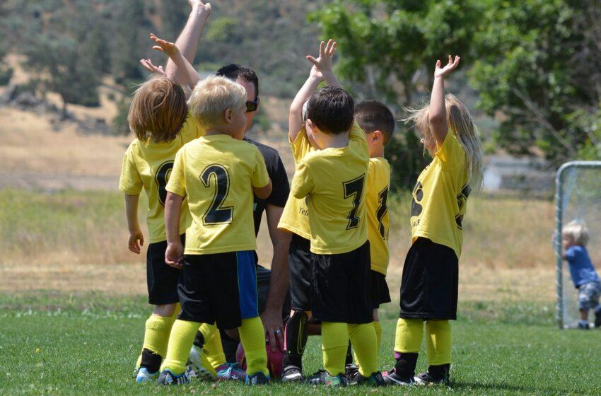 Основные подходы к реализации образовательной области «Физическое развитие» в детском саду