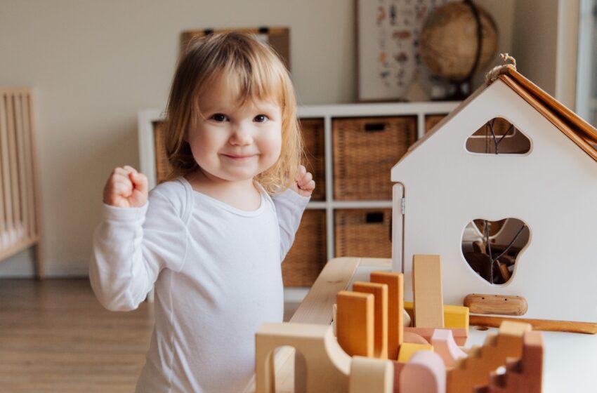 Развитие исполнительных функций у детей.