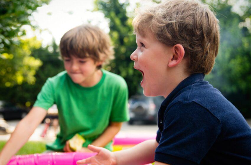 Что делать, если ребёнок терроризирует других детей и воспитателя в саду?