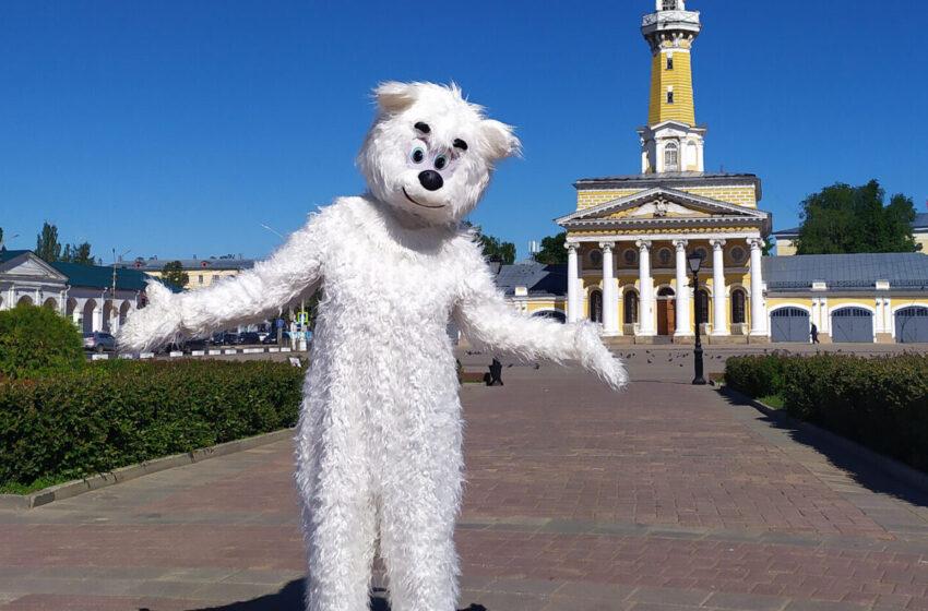 1 июня в Костроме завершился региональный этап Всероссийского фестиваля «Умка» среди воспитанников дошкольных учреждений.
